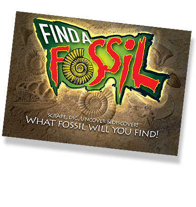 Display Poster (Find a Fossil)